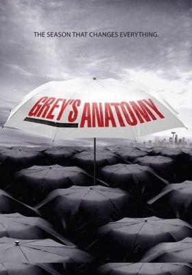 그레이 아나토미 시즌 6의 포스터