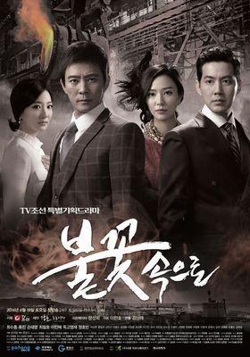 불꽃 속으로 's Poster