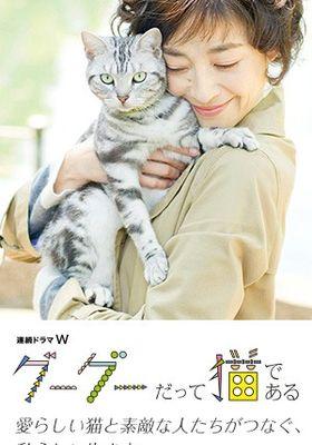 Gou Gou, the Cat's Poster