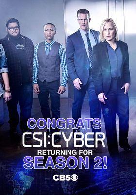 CSI: 사이버 시즌 2의 포스터