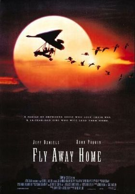 Fly Away Home's Poster