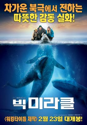 Big Miracle's Poster