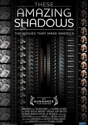 These Amazing Shadows's Poster