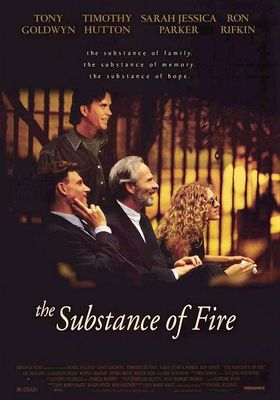The Substance Of Fire's Poster
