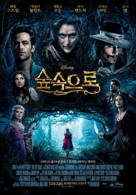Into the Woods's Poster