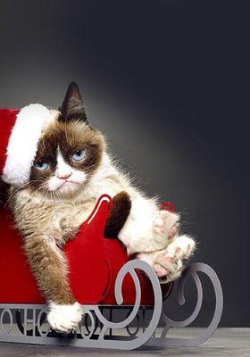 Grumpy Cat's Worst Christmas Ever's Poster