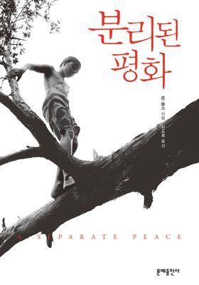 분리된 평화's Poster