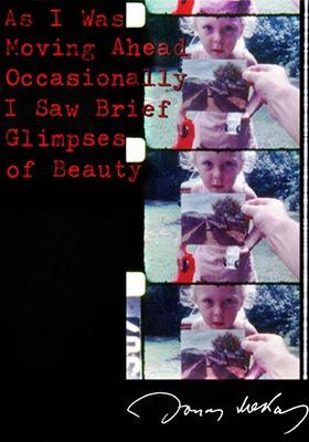 우연히 나는 아름다움의 섬광을 보았다의 포스터