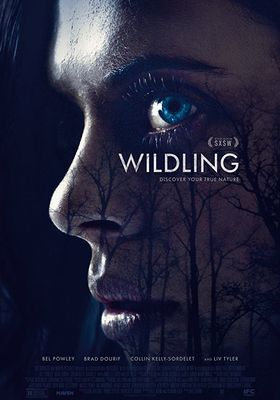 Wildling's Poster
