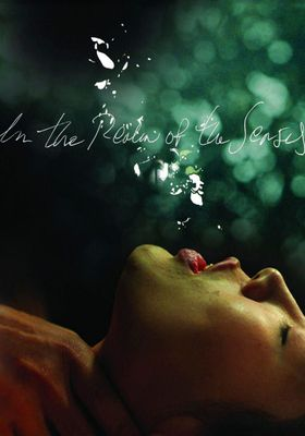 In the Realm of the Senses's Poster