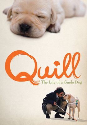 Quill:  The Life of a Guide Dog's Poster