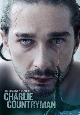 Charlie Countryman's Poster