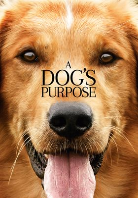 A Dog's Purpose's Poster