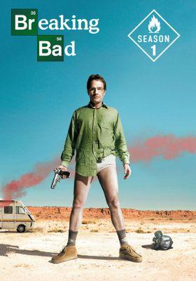 Breaking Bad Season 1's Poster