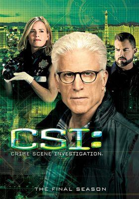 CSI: 라스베가스 시즌 15의 포스터