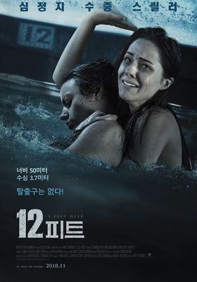 12 Feet Deep's Poster