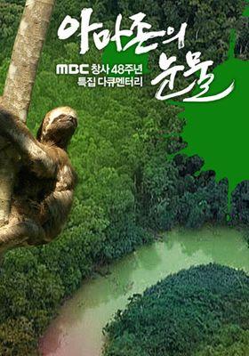 『아마존의 눈물』のポスター