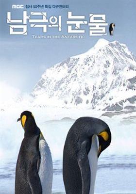 『南極の涙』のポスター
