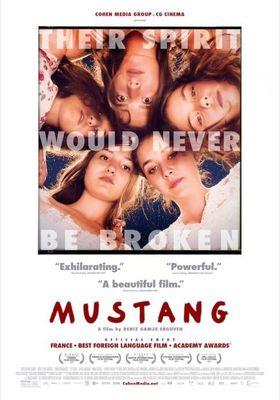 Mustang's Poster