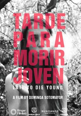 Too Late to Die Young's Poster