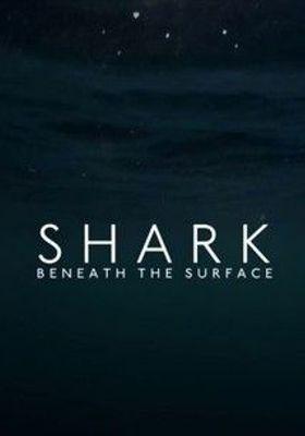 상어의 은밀한 사생활의 포스터