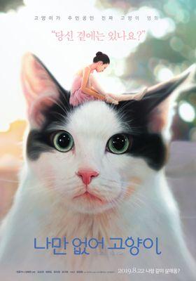 Hello, My Cat's Poster