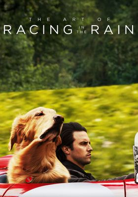 The Art of Racing in the Rain's Poster