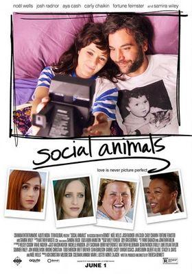 Social Animals's Poster