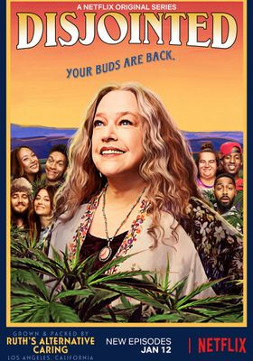Disjointed's Poster