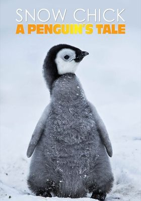 Snow Chick - A Penguin's Tale's Poster