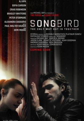 Songbird's Poster