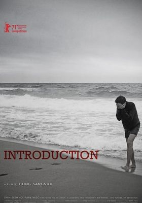 Introduction's Poster