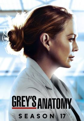 Grey's Anatomy Season 17's Poster