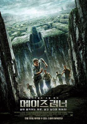 『メイズ・ランナー』のポスター