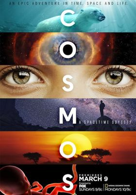 Cosmos: A Spacetime Odyssey Season 1's Poster