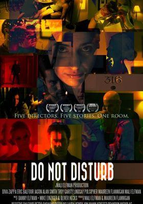 Do Not Disturb's Poster
