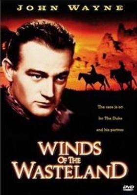 황야의 바람의 포스터