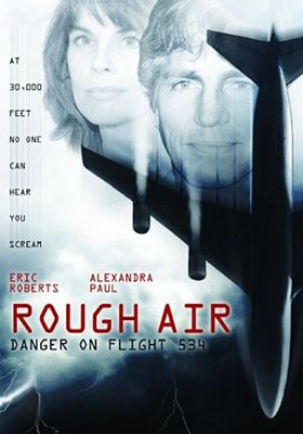 Rough Air: Danger on Flight 534's Poster