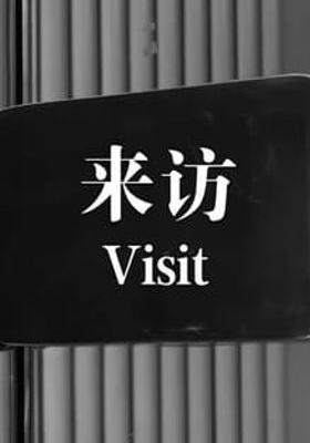 Visit's Poster