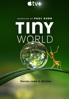 Tiny World 's Poster