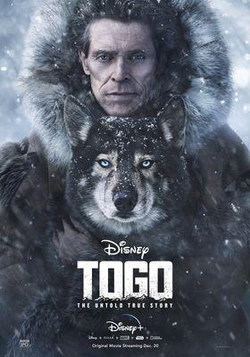 Togo's Poster