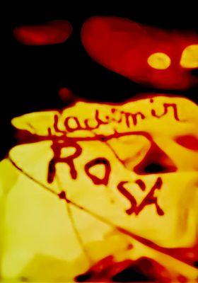 VLADIMIR ET ROSA's Poster