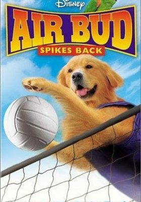 『에어 버드 5』のポスター