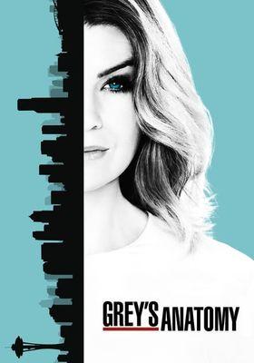 Grey's Anatomy Season 13's Poster