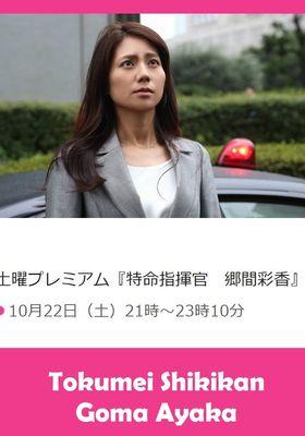 『特命指揮官 郷間彩香』のポスター
