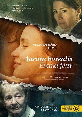 오로라 보레알리스의 포스터