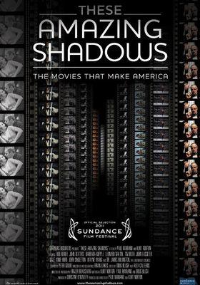 『These Amazing Shadows (原題)』のポスター