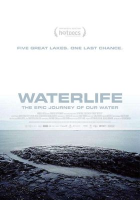 Waterlife's Poster