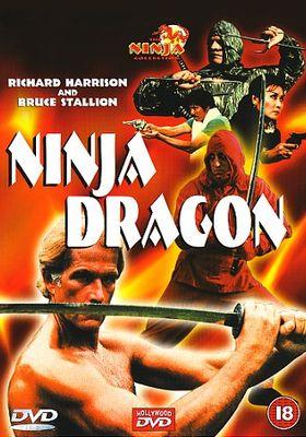 닌자 드래곤의 포스터