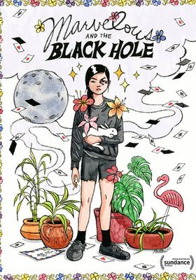 Marvelous and the Black Hole's Poster